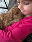 Chiropractic Dawsonville GA Dog Chiropractic Care